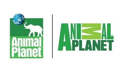 animal-planet1